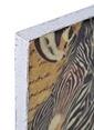 Dekorazon Cute Zebra Duvar Aksesuarı Renkli